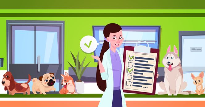 Promuovere una struttura veterinaria